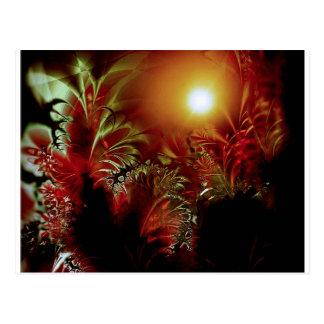 Sun Peace Postcard