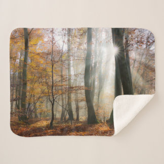 Sun Rays Mystic Scenic Fall Forest Nature Photo Sherpa Blanket