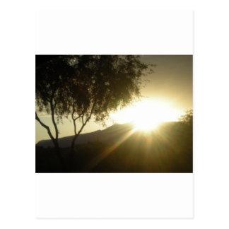 Sun Rise Post Card