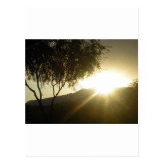 Sun Rise Postcard