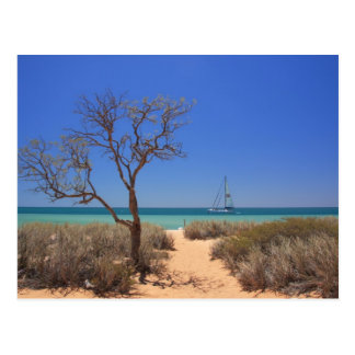 Sun, Sea, Sand - Monkey Mia Western Australia Postcard