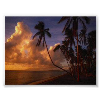 sun set on the beach poster