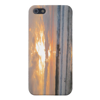 Sun Sets on Snoozing Elephant Seals Cover For iPhone 5