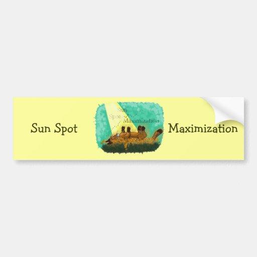 Sun Spot Maximisation
