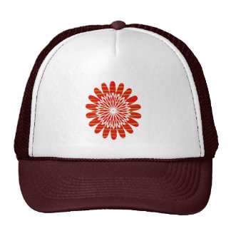 SUN SUTRA : Reiki Master created RED SHADE energy Mesh Hat