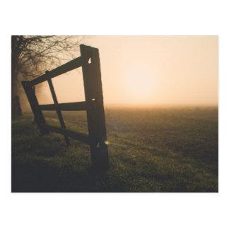 Sun through the mist over a field postcard