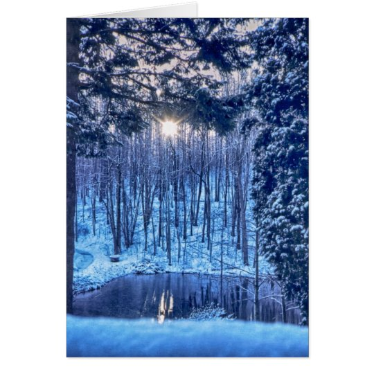 Sun through Trees onto Pond in Snow Card