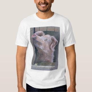 Sun Worship Tee Shirt