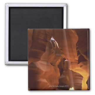 Sunbeam hitting tumbleweed on canyon floor square magnet