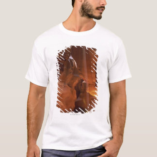 Sunbeam hitting tumbleweed on canyon floor T-Shirt