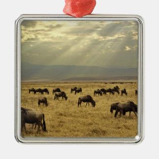 Sunbeams and Wildebeest, Connochaetes taurinus Christmas Ornament