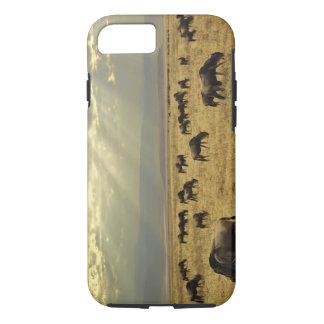 Sunbeams and Wildebeest, Connochaetes taurinus iPhone 7 Case
