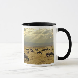 Sunbeams and Wildebeest, Connochaetes taurinus Mug