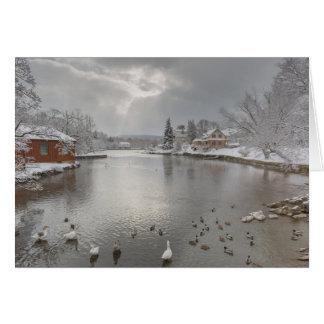 Sunbeams embrace the duck pond card