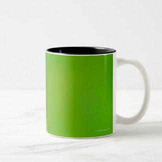 Sunburst above tiny ladybug climbing Two-Tone coffee mug
