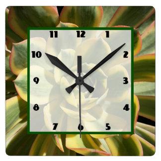 Sunburst Aeonium 1 Wall Clock