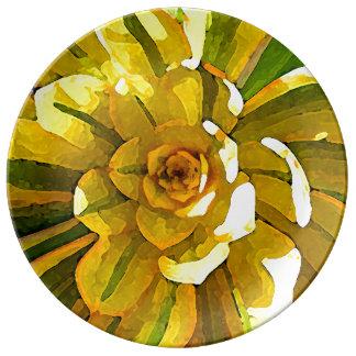 Sunburst Aeonium Succulent Square by Amy Vangsgard Porcelain Plate