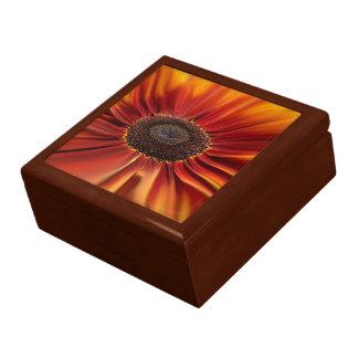Sunburst Gift Box
