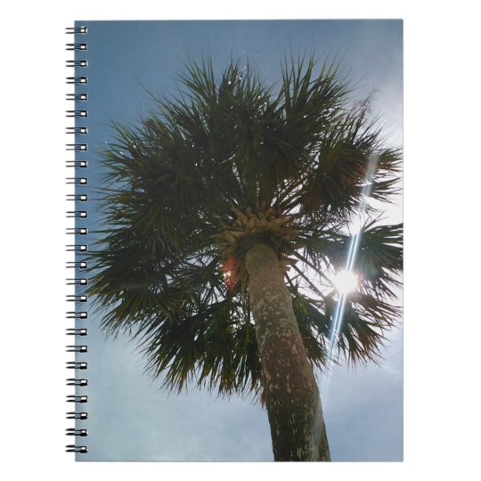 Sunburst Palm Notebook