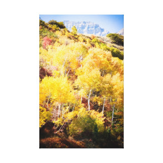 Sundance Fall Leaves Stretched Canvas Prints