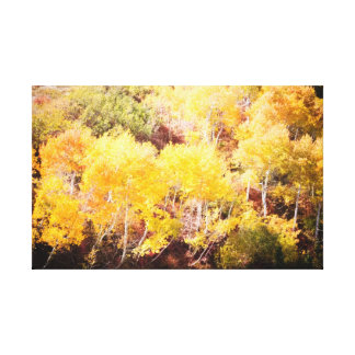 Sundance Fall Leaves Canvas Print