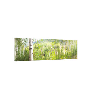 Sundance Panorama Canvas Print