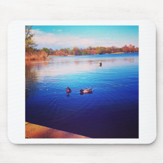 Sunday Ducks Mouse Pad