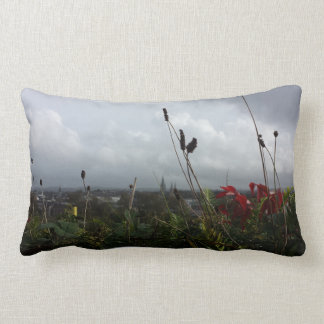 Sundays Well Road, Co. Cork, Ireland Throw Pillow
