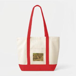 Sundown Jackrabbit Bags