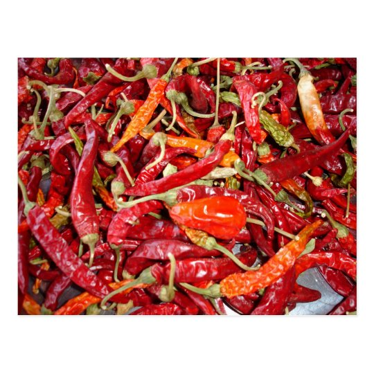 Sundried Chilli Peppers Postcard