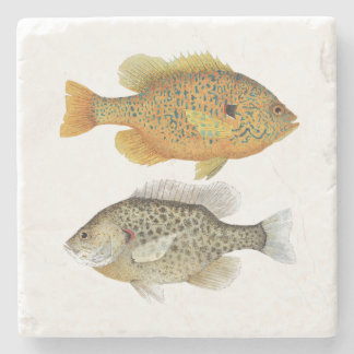 Sunfish Coater Stone Coaster