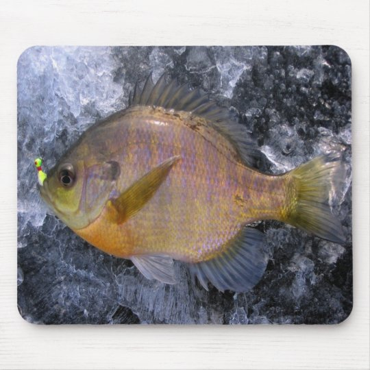 Sunfish Mouse Pad