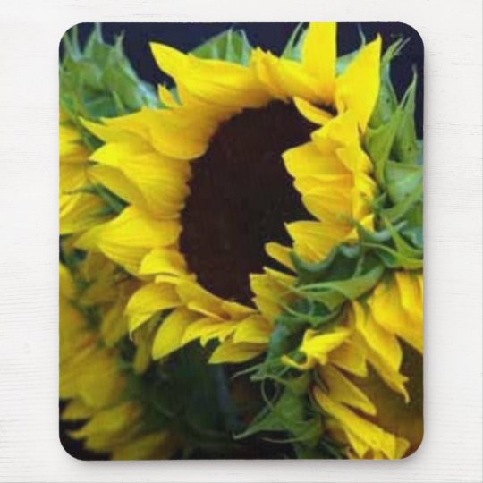 Sunfllower Study by debbieophotography Mouse Mat