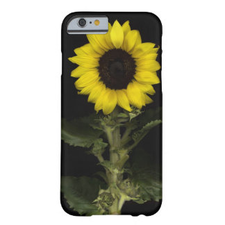 Sunflower 11 barely there iPhone 6 case