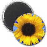 Sunflower 6 Cm Round Magnet