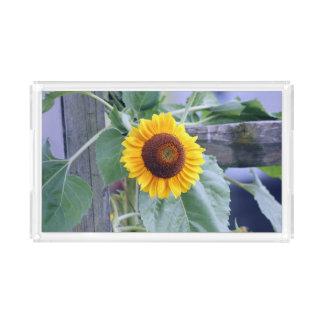 sunflower acrylic tray