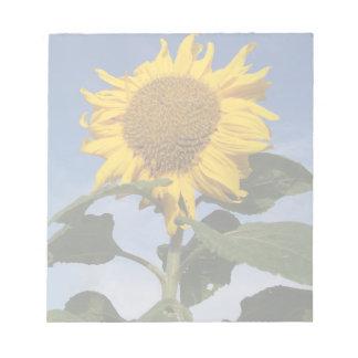 Sunflower against blue sky notepad