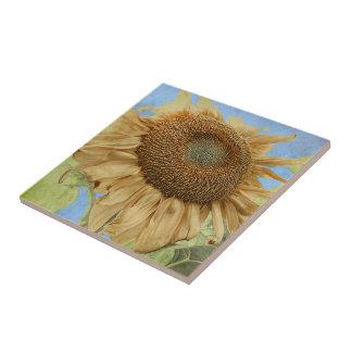 Sunflower against blue sky with textured overlay tile