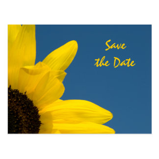 Sunflower and Blue Sky Wedding Save the Date Postcard
