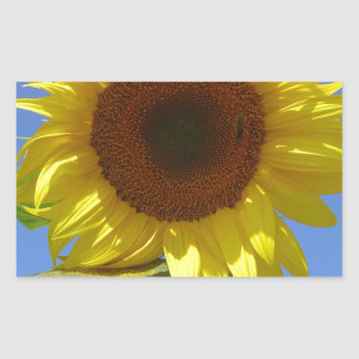 Sunflower and Honey Bee Rectangle Stickers