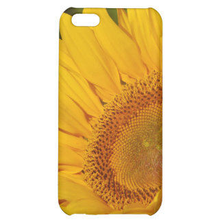 Sunflower and meaning iPhone 5C covers