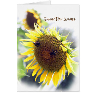 Sunflower any occasion greeting card