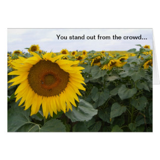 Sunflower - because you're special greetings card