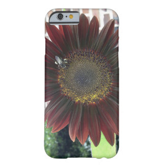 Sunflower Bee 1 Barely There iPhone 6 Case