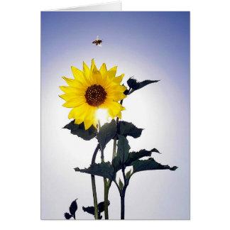 Sunflower & Bee Card