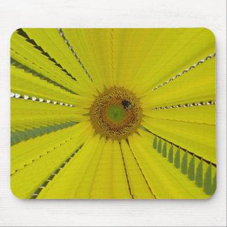 Sunflower Bee Pretty Mousepads