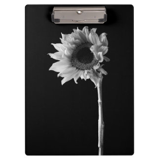 Sunflower - Black and White Photograph Clipboard