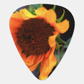 Sunflower bloom guitar pick