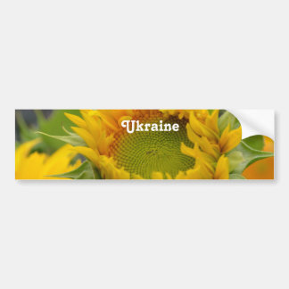 Sunflower Bumper Sticker