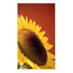 Sunflower Business Card Template